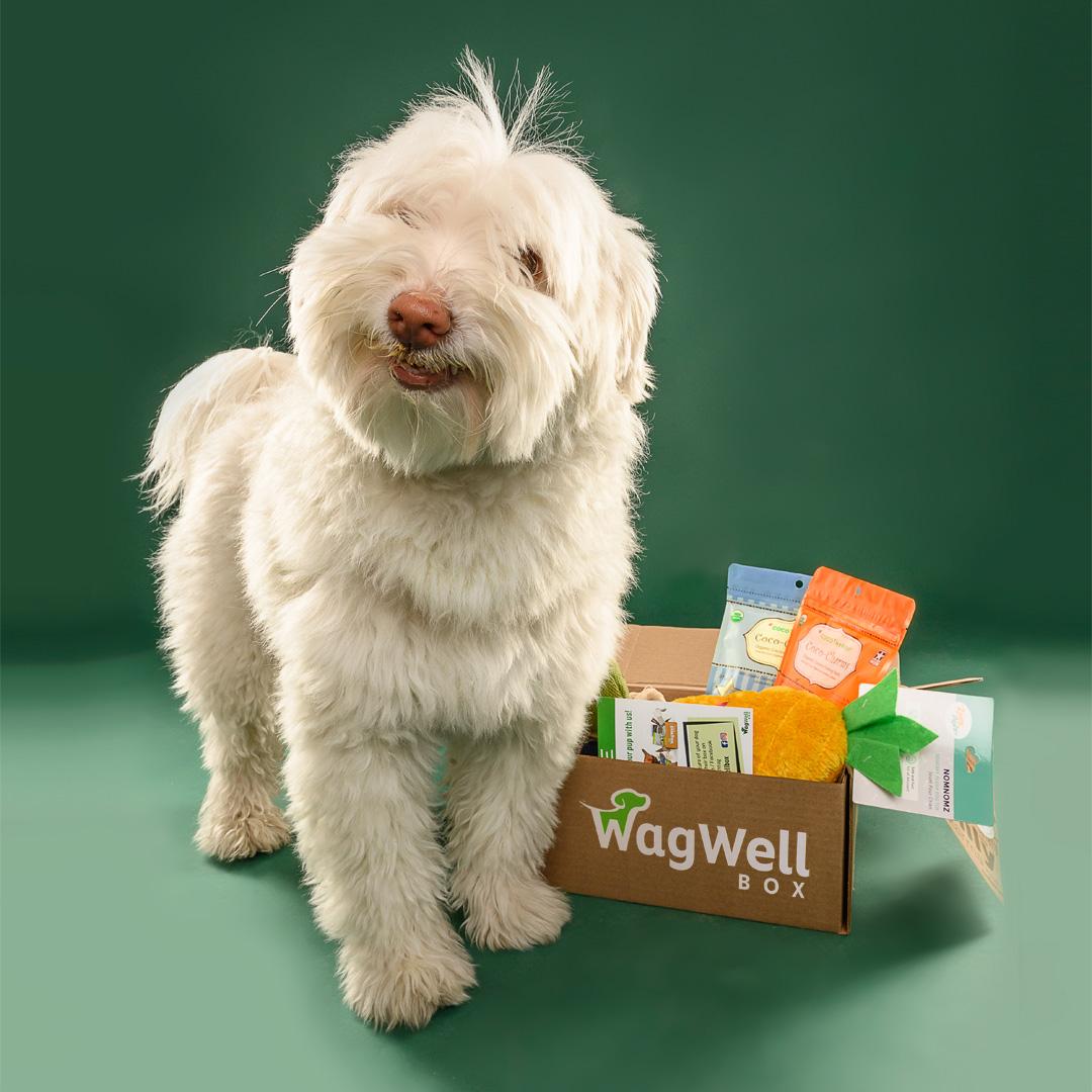 Wag Well Organix Dog Subscription
