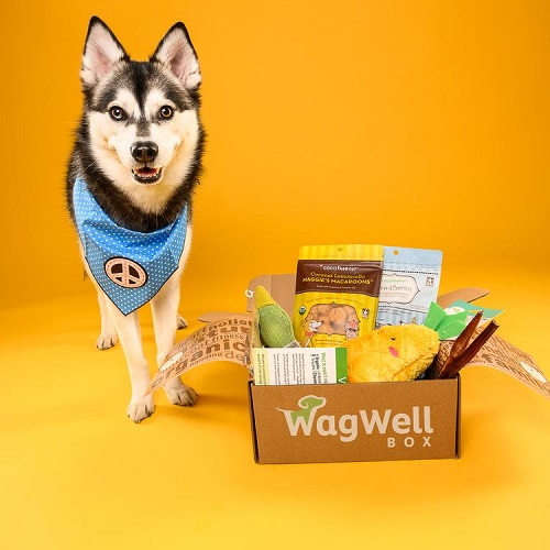 Wag Well Box Comes A Robbins Interactive Affiliate Program
